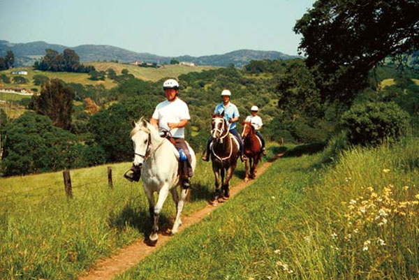 Horseback Riding at Skyline Park - NapaPets